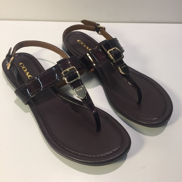 Coach Buckle Leather Sandals THiIzs8